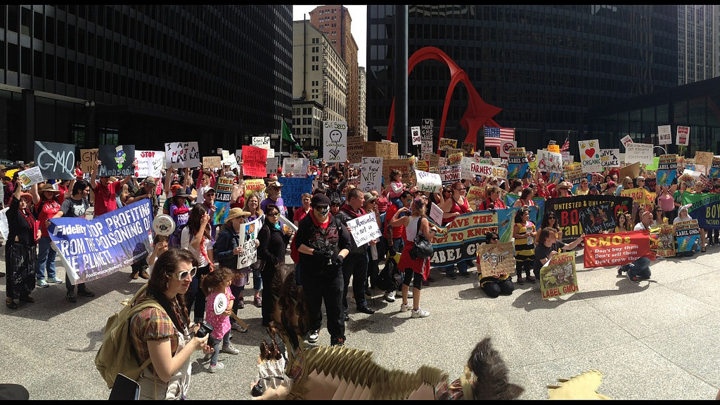 Ph: Rob Kall - March Against Monsanto CC BY